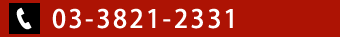 03-3821-2311